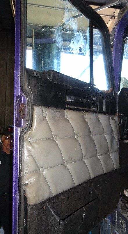 Door Assembly FREIGHTLINER for sale-978031