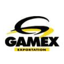 Gamex Inc. logo